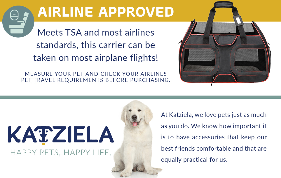 Can I Bring A Guide Assistance Dog On A Ryanair Flight Pet